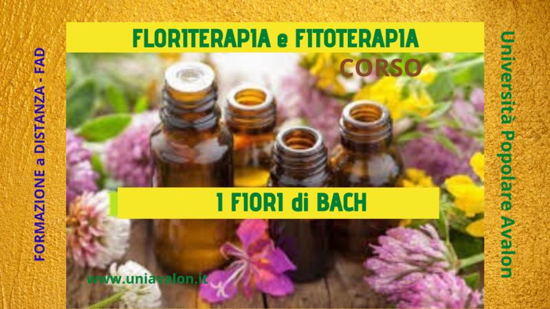 floriterapia-i-fiori-di-bach-corso-fad