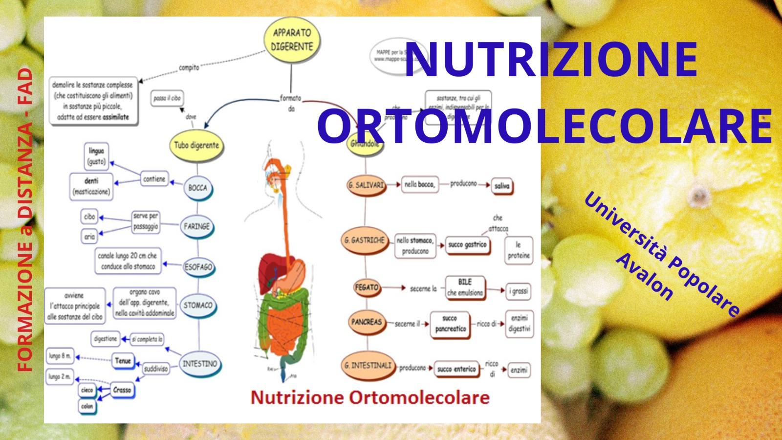 nutrizione-ortomolecolare-corso-fad