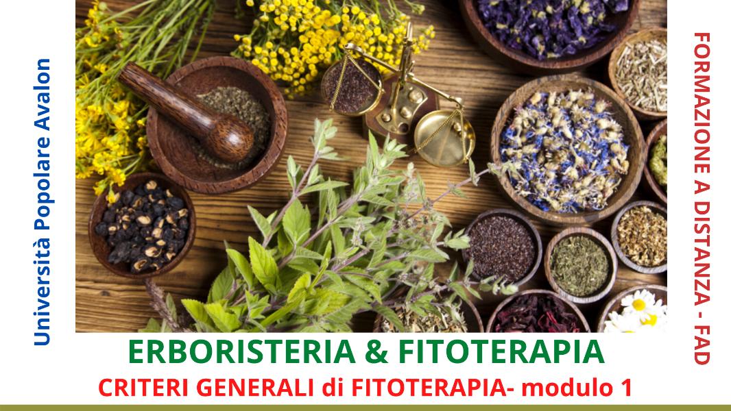 erboristeria-e-fitoterapia-1-criteri-generali-di-fitoterapia-i-modulo-corso-fad