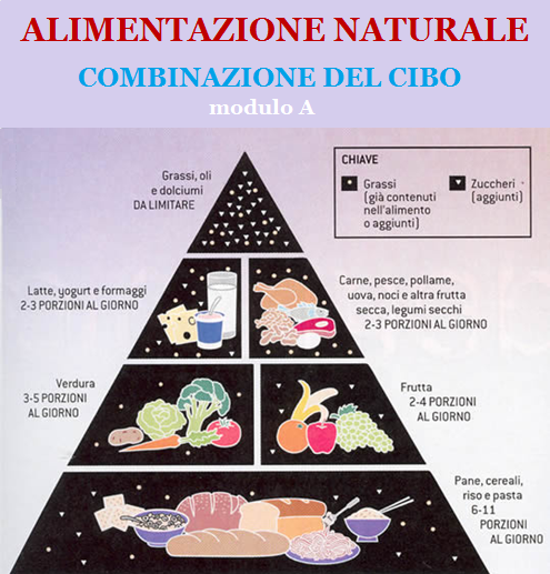 alimentazione-naturale-modulo-a-combinazione-del-cibo