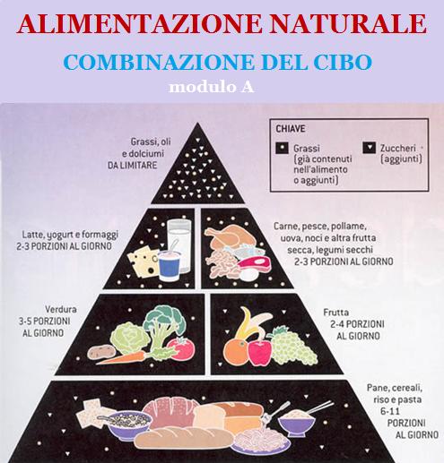 dispensa-alimentazione-naturale-modulo-a-combinazione-del-cibo