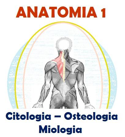 dispensa-anatomia-1-citologia-osteologia-miologia