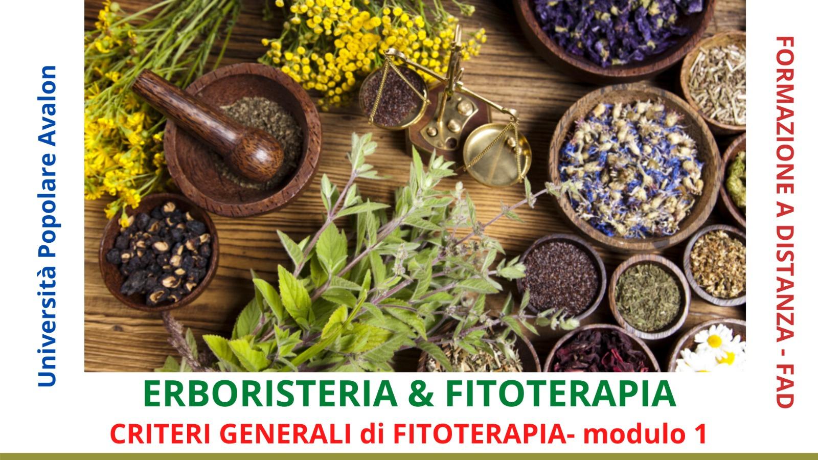 dispensa-erboristeria-e-fitoterapia-criteri-generali-di-fitoterapia-1-modulo