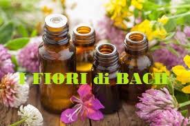dispensa-floriterapia-i-fiori-di-bach