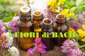 dispensa-floriterapia-i-fiori-di-bach